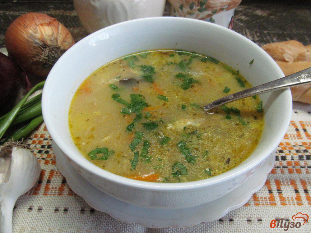 данного супы из квашеной капусты рецепты с фото отдохнуть сочи