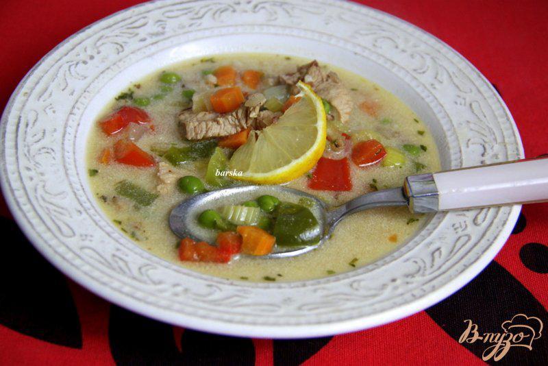 Фото приготовление рецепта: Венгерский куриный суп с овощами шаг №7