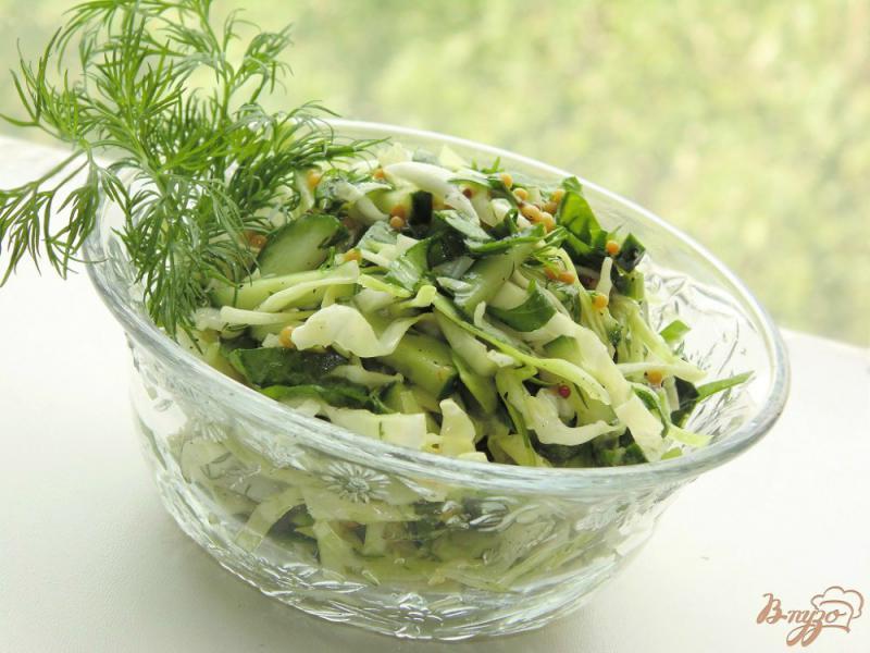 Фото приготовление рецепта: Низкокалорийный салат со шпинатом шаг №5