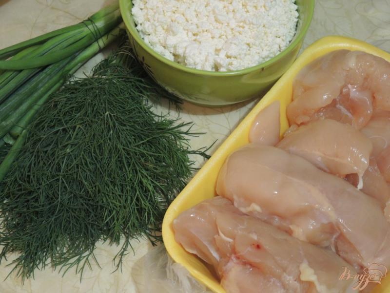 Фото приготовление рецепта: Куриные грудки с творогом шаг №1