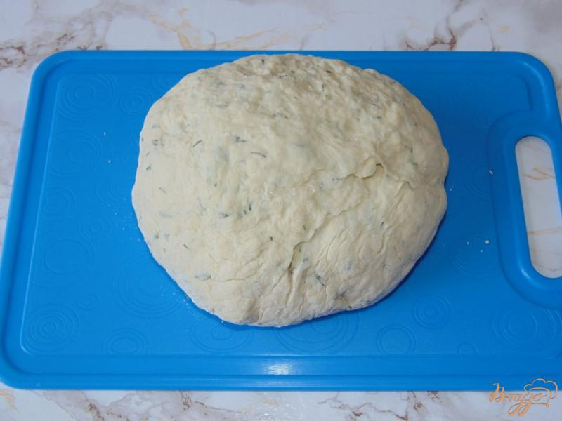 Фото приготовление рецепта: Творожные лепешки на кефире с укропом шаг №5
