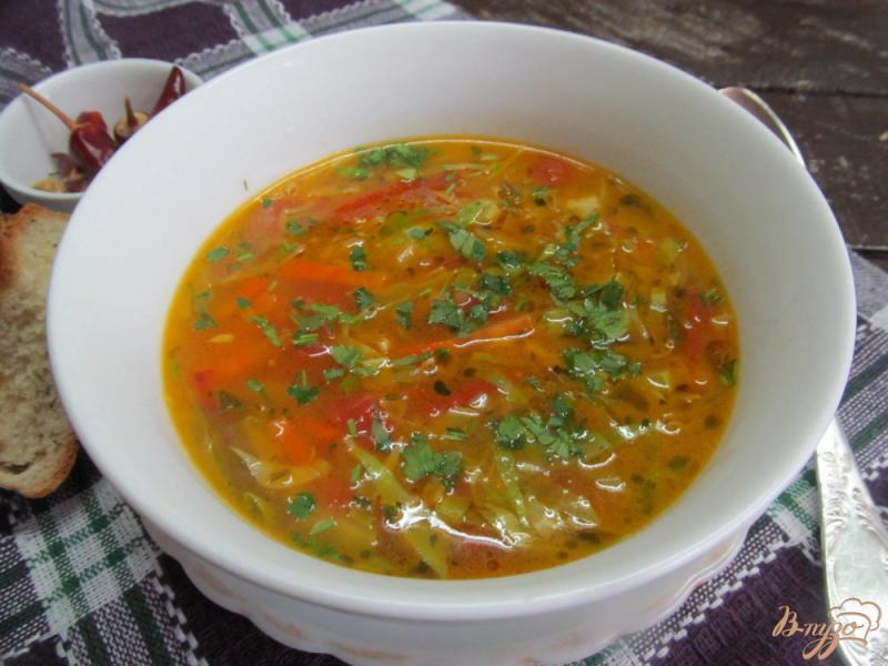 Фото приготовление рецепта: Овощной суп с яичной лапшой шаг №9