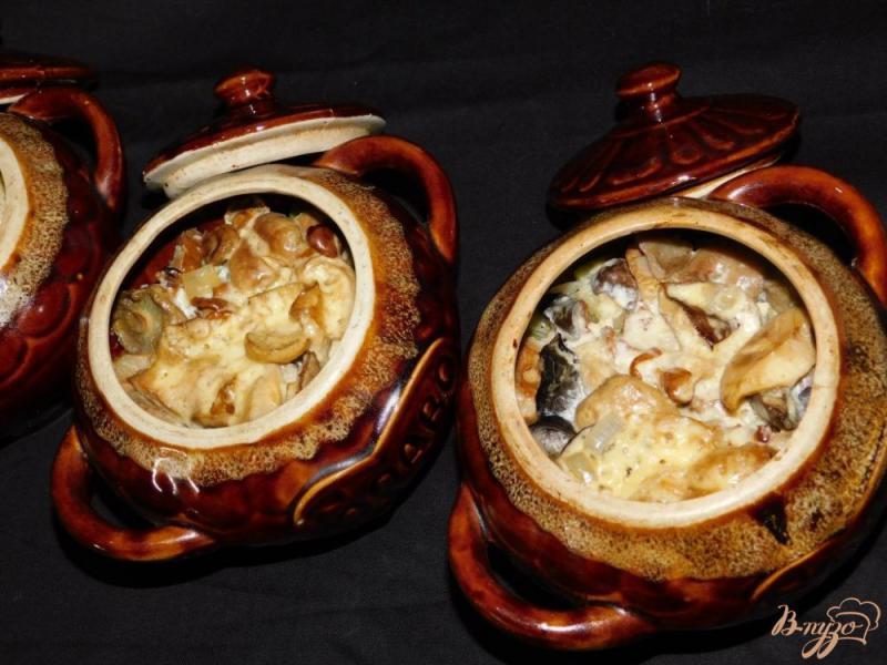 Фото приготовление рецепта: Мясо с овощами и грибами в горшочках шаг №7