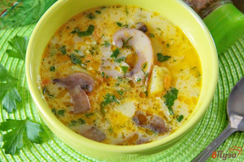 Фото приготовление рецепта: Сырный суп с грибами и вермишелью шаг №8