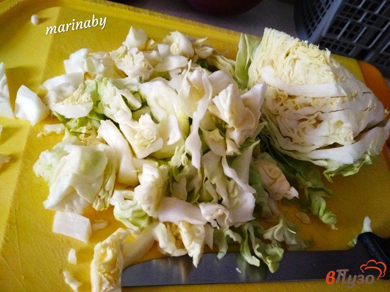 Фото приготовление рецепта: Щи из свежей капусты с курицей шаг №3