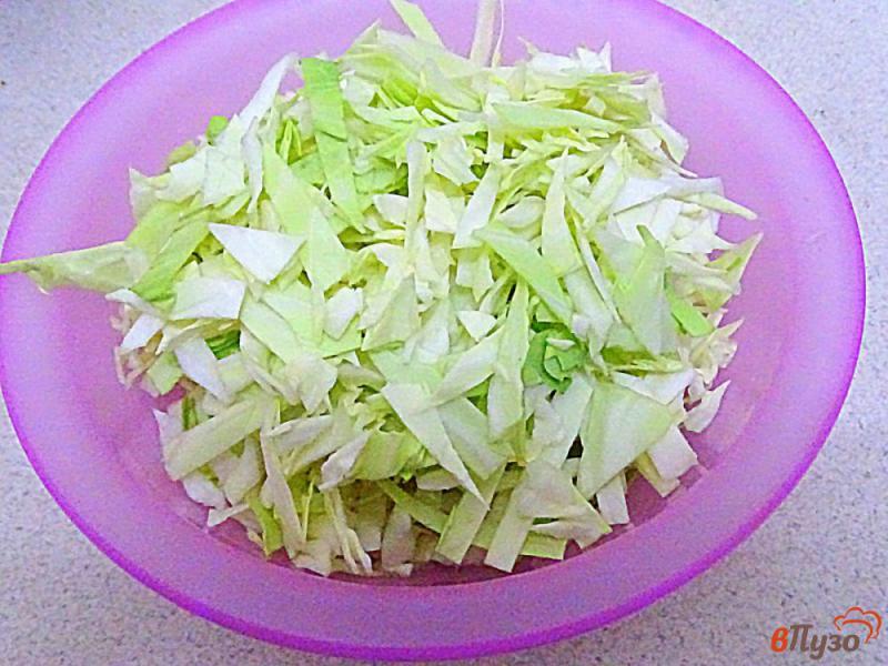 Фото приготовление рецепта: Гречка с капустой диетическая шаг №2