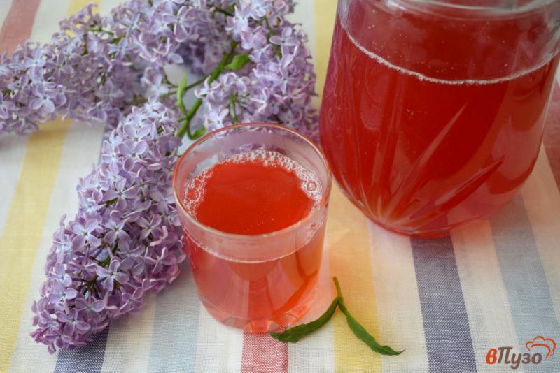 Фото приготовление рецепта: Клюквенный морс с красной смородиной и мятой шаг №6