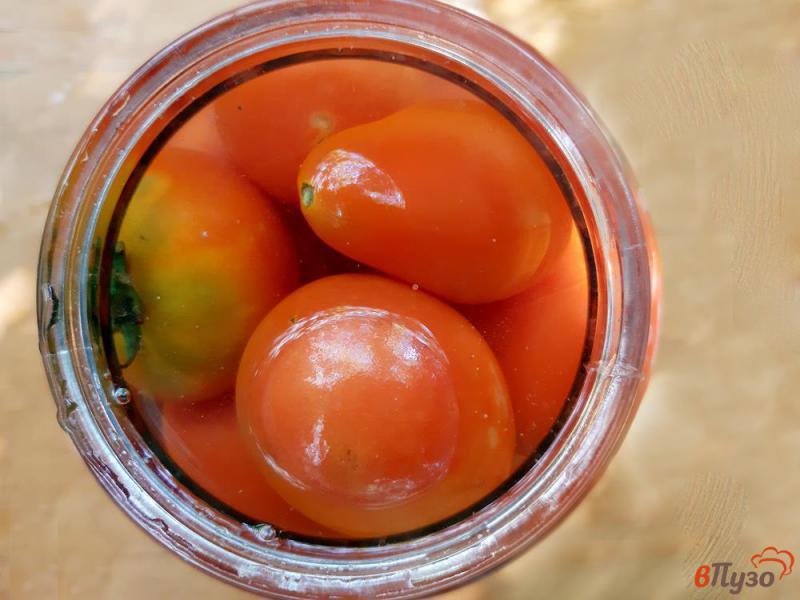 Фото приготовление рецепта: Помидоры консервированные с виноградом на зиму шаг №5