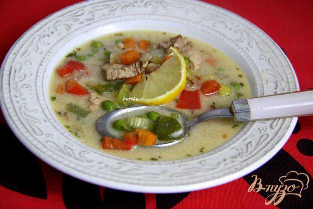 фото рецепта: Венгерский куриный суп с овощами