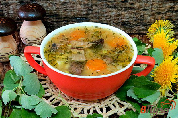 фото рецепта: Суп затируха с белыми грибами