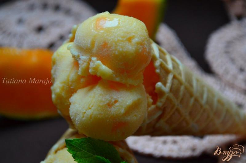 Фото приготовление рецепта: Мороженое из дыни шаг №9