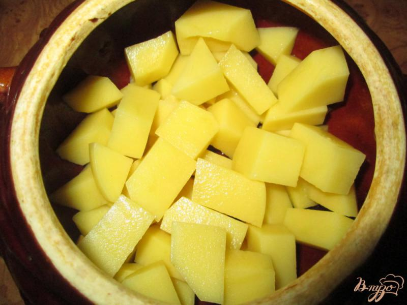 Фото приготовление рецепта: Жаркое с курицей и картофелем в горшочках шаг №2