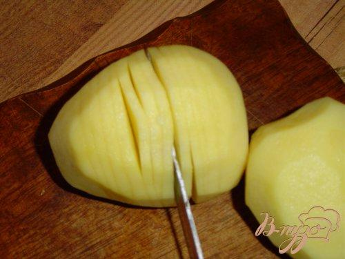Картошка-гармошка с укропом
