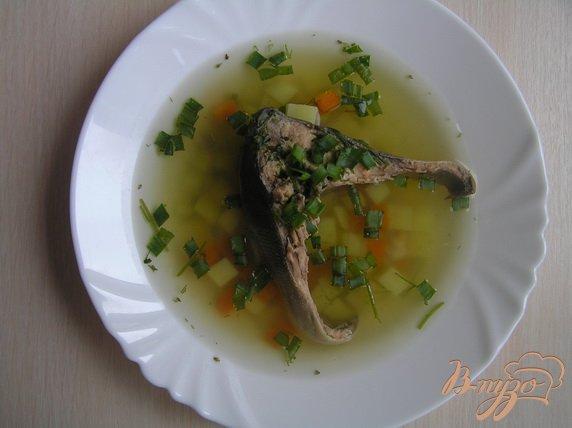 Фото приготовление рецепта: Суп из судака шаг №5