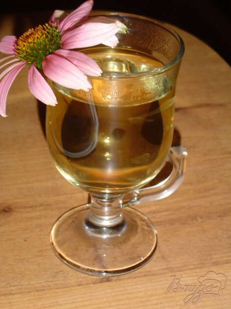 фото рецепта: Чай мятный с цветами эхинацеи
