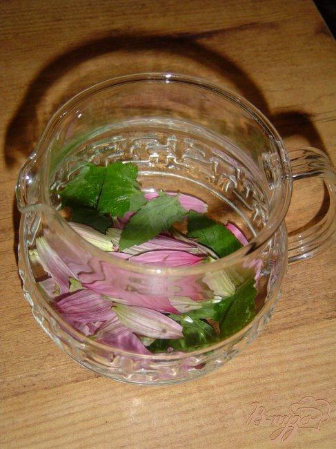 Фото приготовление рецепта: Чай мятный с цветами эхинацеи шаг №2