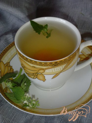 """""""Чай с абрикосом,нектарином и мятой."""""""