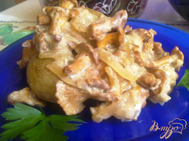 Рецепт Лисички в сметанном соусе