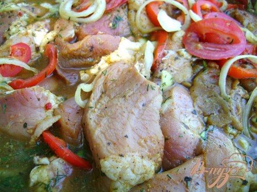 Шашлык из свинины в пивном маринаде с помидорами