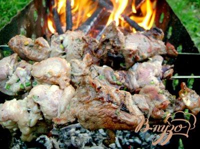 фото рецепта: Шашлык из свинины в кефире с зелёным луком