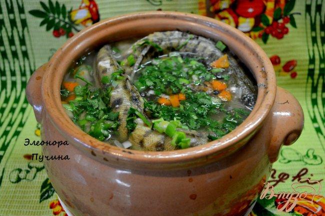 Фото приготовление рецепта: Уха в горшочке шаг №3