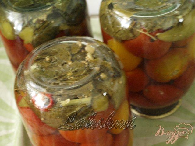 Фото приготовление рецепта: Помидоры с хреном и семенами укропа шаг №3