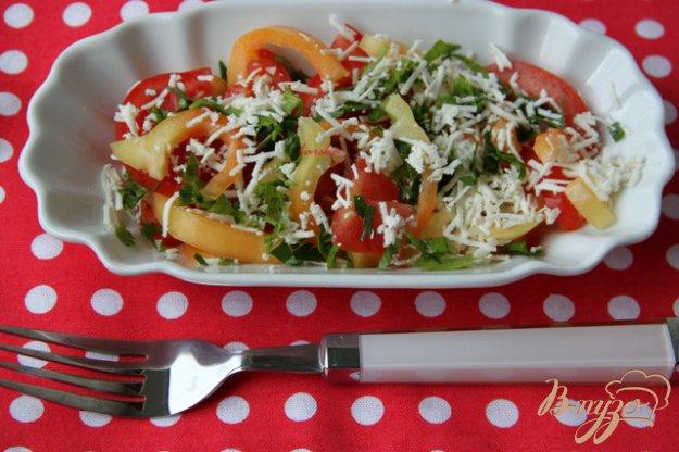 Рецепт Салат из помидоров с брынзой
