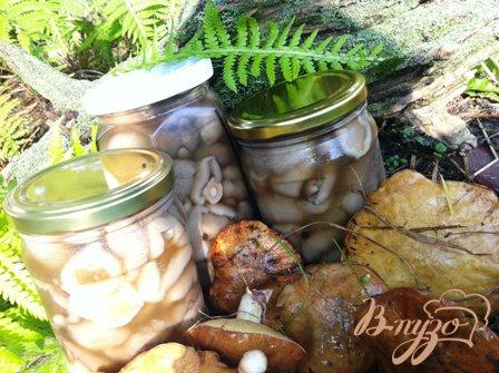 фото рецепта: Маринованные грибы