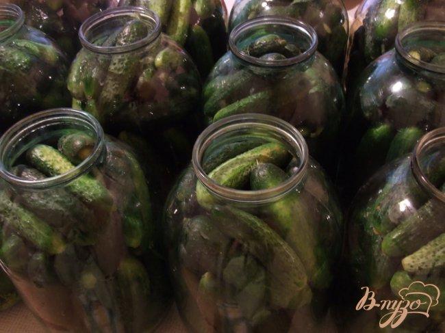 Фото приготовление рецепта: Огурцы на зиму (с асипирином) шаг №2