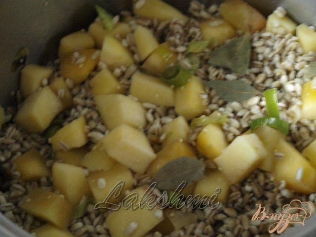Фото приготовление рецепта: Орзотто с шампиньонами и тыквой шаг №2