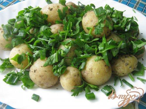 Картофель с пряными травами в микроволновке.