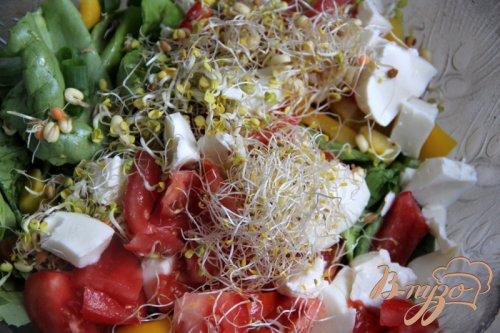 Салат из овощей, с ростками