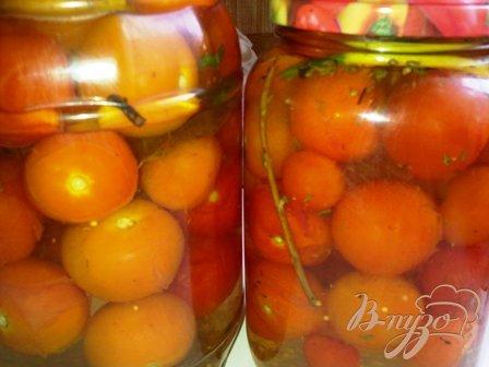 фото рецепта: Маринованные помидоры  черри