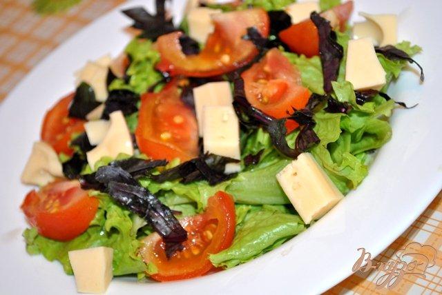 Фото приготовление рецепта: Салат с помидорами и моцарелой шаг №3