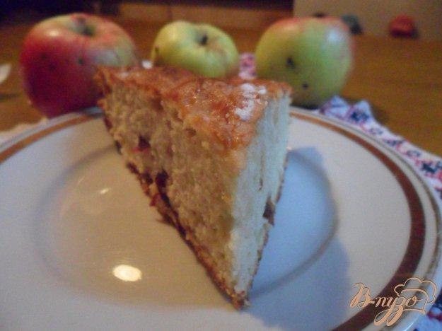 Рецепт Шарлотка с яблоками и сушёной вишней