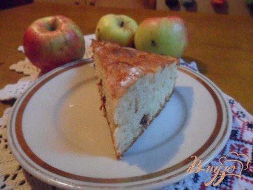Шарлотка с яблоками и сушёной вишней