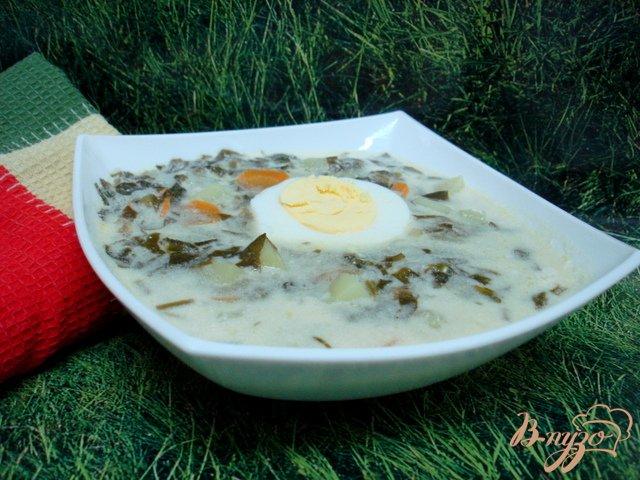 Фото приготовление рецепта: Щавелевый суп с рисом шаг №5