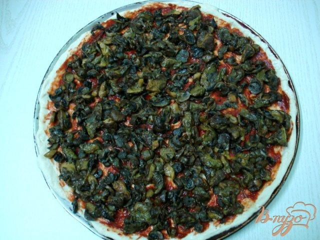 Фото приготовление рецепта: Пицца сборная шаг №3