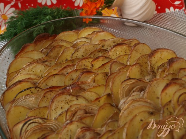 Рецепт Картофельный гратин