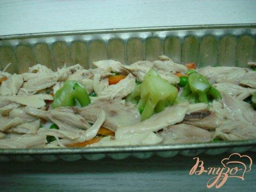 Заливное с курицей и овощами.