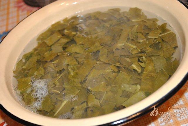 Фото приготовление рецепта: Щавель замороженный шаг №3