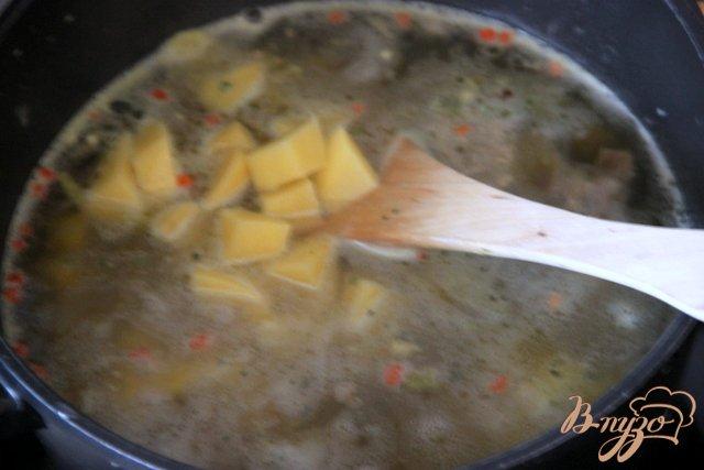 Фото приготовление рецепта: Борщ с квашеной капустой и черносливом шаг №1