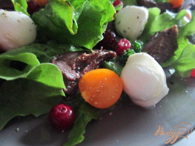 Рецепт Салат с гусиными сердечками и клюквой