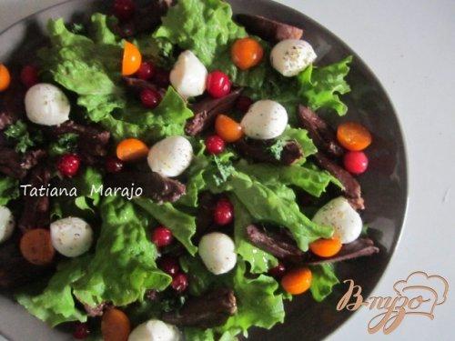 Салат с гусиными сердечками и клюквой