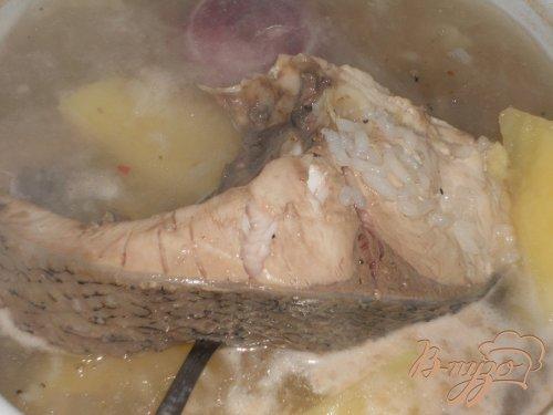 Рыбный суп из толстолоба