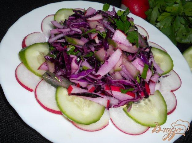 Рецепт Салат из краснокочанной капусты, огурца и редиса