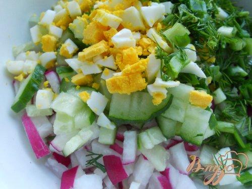 Салат из редиса с яйцом и огурцом