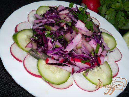 Салат из краснокочанной капусты, огурца и редиса