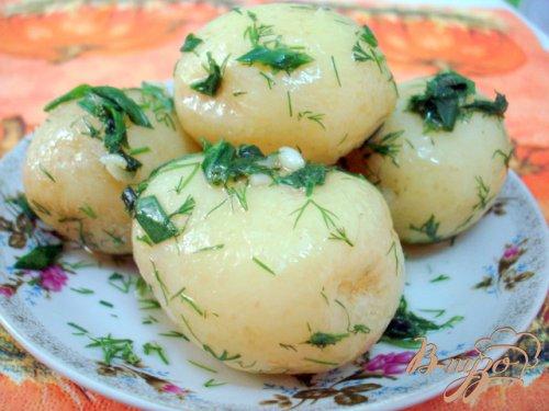 Молодой картофель (три способа подачи)
