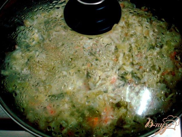 Фото приготовление рецепта: Капуста молодая тушёная со сметаной шаг №5